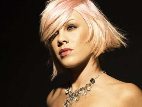 Singer Pink Denies Her Milkshake Brings All the Girls to the Junk Yard