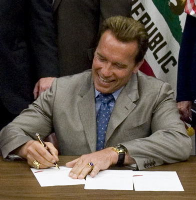 Schwarzenegger Has Until Midnight Sunday to Create Harvey Milk Day