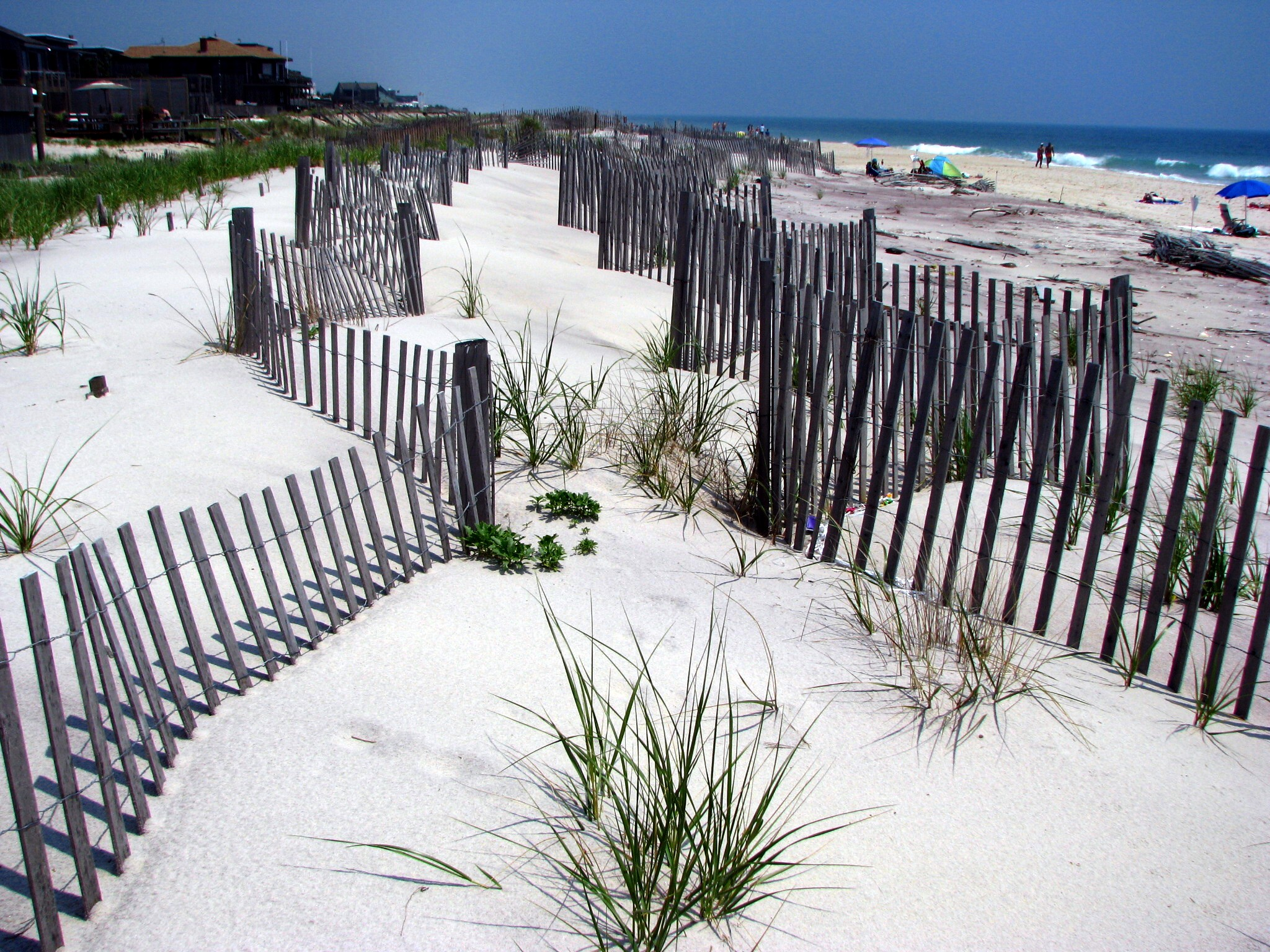 The Fire Island Pines Fire Sale: The $18 Million Purchase of New York's Gay Haven