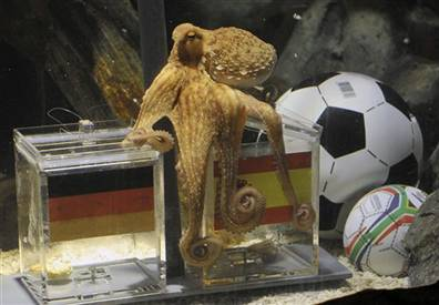 5 Things I Want Paul The Psychic Octopus to Predict