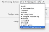 Facebook Adds 'In A Civil Union' And 'In A Domestic Partnership' Option To Relationship Statuses
