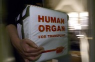 Why Can't People With HIV Receive HIV+ Organ Transplants?