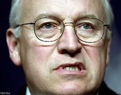 Cheney's Homeland Hostile