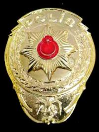 turkeybadge.jpg