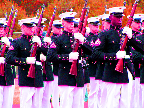 Pentagon Approves 'First Fabulous Battalion' in Effort to Let Gays Serve Openly