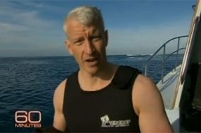 Anderson Cooper Mans Up, Dives Into Shark Waters Without the Cage