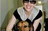 Kylie Minogue Kills Dogs