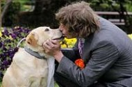 Australia Doesn't Even Have Gay Marriage And Already Men Are Marrying Dogs