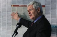 Newt Gingrich's Presidential Campaign Platform: Keeping The Gays From Getting Any More Rights